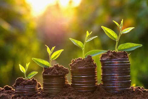Finanziamenti Business Plan Ristorante
